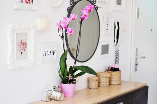 Полезные советы для женщин: уют в маленькой квартире