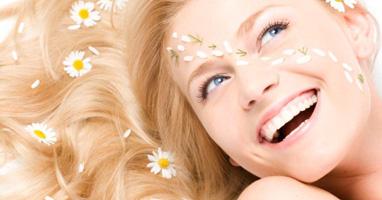 Маргаритка – домашний косметолог